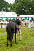 New Forest Show. Tuesday 2013  -4