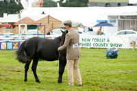 New Forest Show. Tuesday 2013  -9