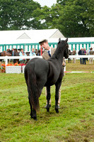 New Forest Show. Tuesday 2013  -3