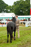 New Forest Show. Tuesday 2013  -5