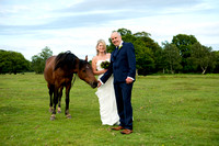 Tim & Clare. Wedding Highlights gallery. Balmer Lawn hotel New Forest
