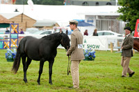 New Forest Show. Tuesday 2013  -11